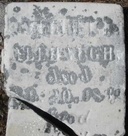 ALLBAUGH, CATHERINE A. - Montgomery County, Ohio | CATHERINE A. ALLBAUGH - Ohio Gravestone Photos