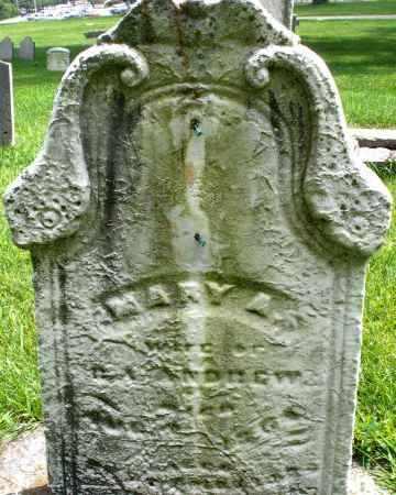 ANDREW, MARY A. - Montgomery County, Ohio   MARY A. ANDREW - Ohio Gravestone Photos