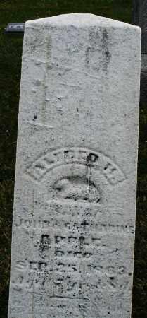 APPLE, ALFRED H. - Montgomery County, Ohio | ALFRED H. APPLE - Ohio Gravestone Photos
