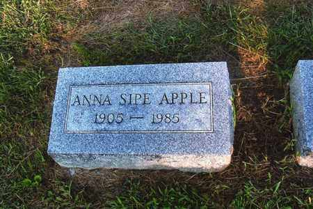 SIPE APPLE, ANNA - Montgomery County, Ohio | ANNA SIPE APPLE - Ohio Gravestone Photos