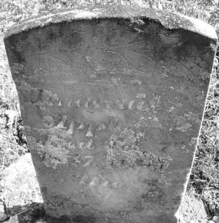 APPLE, AMANUEL - Montgomery County, Ohio | AMANUEL APPLE - Ohio Gravestone Photos