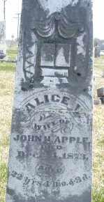 APPLE, ALICE - Montgomery County, Ohio | ALICE APPLE - Ohio Gravestone Photos