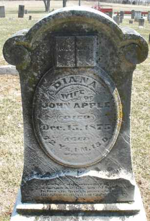 APPLE, DIANA - Montgomery County, Ohio   DIANA APPLE - Ohio Gravestone Photos