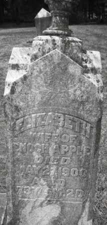 APPLE, ELIZABETH - Montgomery County, Ohio | ELIZABETH APPLE - Ohio Gravestone Photos