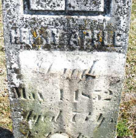 APPLE, HENRY - Montgomery County, Ohio   HENRY APPLE - Ohio Gravestone Photos
