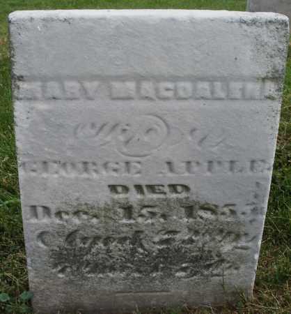 APPLE, MARY MAGDALENA - Montgomery County, Ohio | MARY MAGDALENA APPLE - Ohio Gravestone Photos
