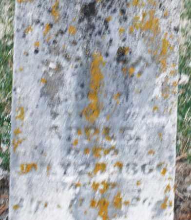 APPLE, OLIVER - Montgomery County, Ohio | OLIVER APPLE - Ohio Gravestone Photos