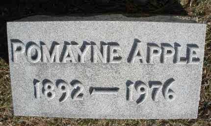 APPLE, POMAYNE - Montgomery County, Ohio | POMAYNE APPLE - Ohio Gravestone Photos