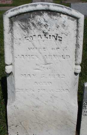 ARNOLD, EMALINE - Montgomery County, Ohio   EMALINE ARNOLD - Ohio Gravestone Photos