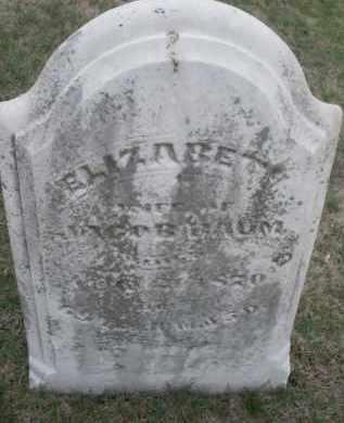 BAUM, ELIZABETH - Montgomery County, Ohio | ELIZABETH BAUM - Ohio Gravestone Photos