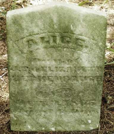 BECKENBAUGH, ALICE - Montgomery County, Ohio | ALICE BECKENBAUGH - Ohio Gravestone Photos