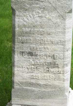 WALBORN BOLANDER, JULIA ANN - Montgomery County, Ohio | JULIA ANN WALBORN BOLANDER - Ohio Gravestone Photos