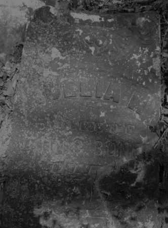 BONER, ??ELIA M. - Montgomery County, Ohio | ??ELIA M. BONER - Ohio Gravestone Photos