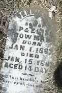 BOWMAN, SON - Montgomery County, Ohio | SON BOWMAN - Ohio Gravestone Photos
