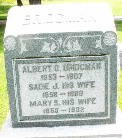 BRIDGMAN, ALBERT O. - Montgomery County, Ohio | ALBERT O. BRIDGMAN - Ohio Gravestone Photos
