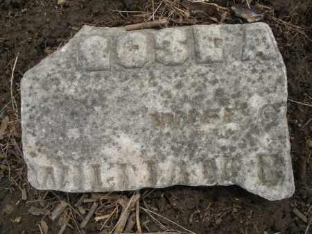 BROWN, ROSE ANN - Montgomery County, Ohio   ROSE ANN BROWN - Ohio Gravestone Photos