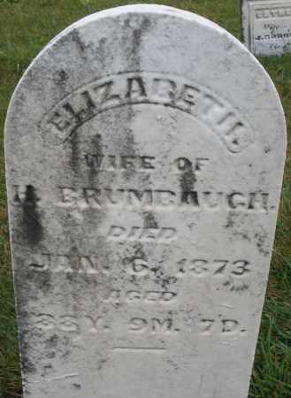 BRUMBAUGH, ELIZABETH - Montgomery County, Ohio   ELIZABETH BRUMBAUGH - Ohio Gravestone Photos
