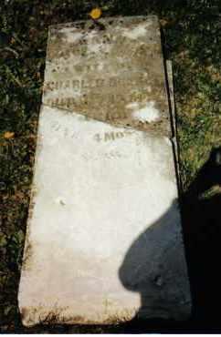 BURKET, SUSANNAH - Montgomery County, Ohio | SUSANNAH BURKET - Ohio Gravestone Photos