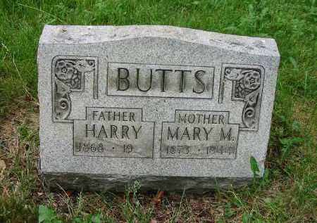 BUTTS, MARY M. - Montgomery County, Ohio | MARY M. BUTTS - Ohio Gravestone Photos