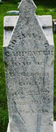 LOWREY CARPENTER, ROSANNA - Montgomery County, Ohio | ROSANNA LOWREY CARPENTER - Ohio Gravestone Photos