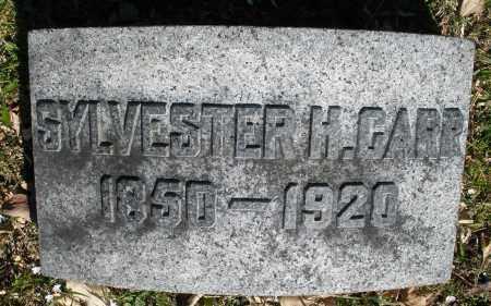CARR, SYLVESTER H. - Montgomery County, Ohio | SYLVESTER H. CARR - Ohio Gravestone Photos