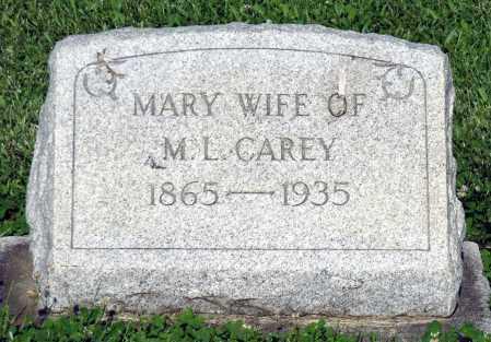 CARY, MARY - Montgomery County, Ohio   MARY CARY - Ohio Gravestone Photos