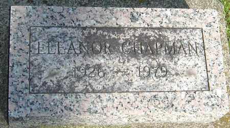 CHAPMAN, ELEANOR - Montgomery County, Ohio | ELEANOR CHAPMAN - Ohio Gravestone Photos