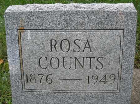 COUNTS, ROSA - Montgomery County, Ohio   ROSA COUNTS - Ohio Gravestone Photos
