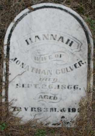 CULVER, HANNAH - Montgomery County, Ohio | HANNAH CULVER - Ohio Gravestone Photos