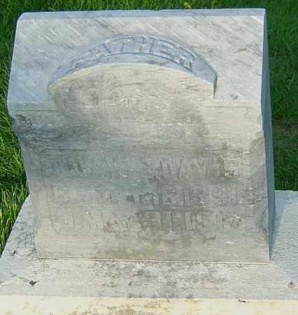DAVIS, ALVAH LOUIS - Montgomery County, Ohio | ALVAH LOUIS DAVIS - Ohio Gravestone Photos