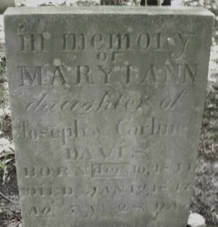 DAVIS, MARY ANN - Montgomery County, Ohio | MARY ANN DAVIS - Ohio Gravestone Photos