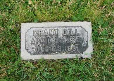 DILL, GRANT - Montgomery County, Ohio | GRANT DILL - Ohio Gravestone Photos