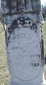 DUFF, MARY - Montgomery County, Ohio | MARY DUFF - Ohio Gravestone Photos