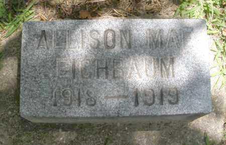 EICHBAUM, ALLISON MAE - Montgomery County, Ohio | ALLISON MAE EICHBAUM - Ohio Gravestone Photos