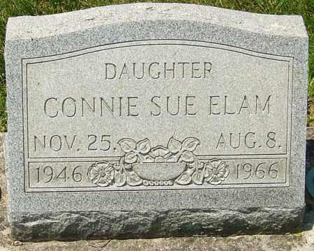 ELAM, CONNIE SUE - Montgomery County, Ohio | CONNIE SUE ELAM - Ohio Gravestone Photos