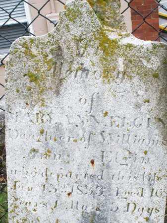 ELGIN, MARY ANN - Montgomery County, Ohio | MARY ANN ELGIN - Ohio Gravestone Photos