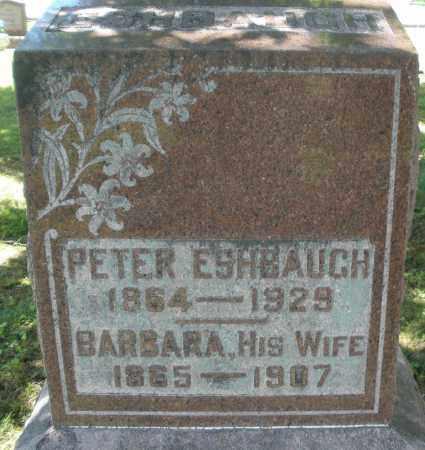 ESHBAUGH, PETER - Montgomery County, Ohio | PETER ESHBAUGH - Ohio Gravestone Photos