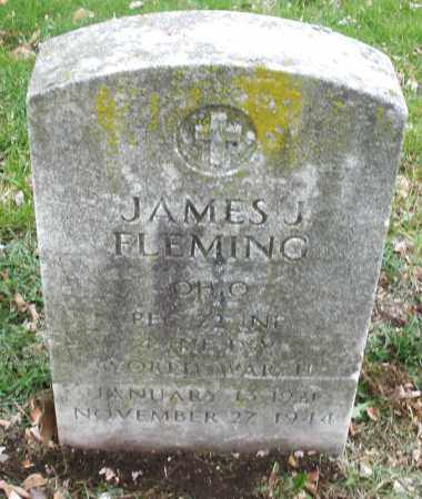 FLEMING, JAMES J. - Montgomery County, Ohio | JAMES J. FLEMING - Ohio Gravestone Photos