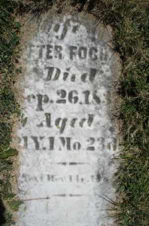 FOCHT, ANN - Montgomery County, Ohio   ANN FOCHT - Ohio Gravestone Photos