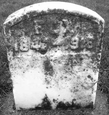 FOX, JOHN W. - Montgomery County, Ohio   JOHN W. FOX - Ohio Gravestone Photos
