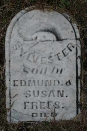 FREES, SYLVESTER - Montgomery County, Ohio | SYLVESTER FREES - Ohio Gravestone Photos