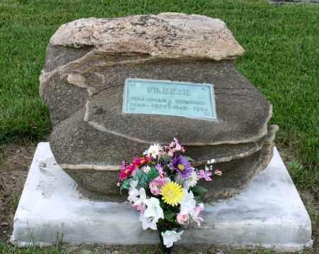 FREESE, SUSANNAH - Montgomery County, Ohio | SUSANNAH FREESE - Ohio Gravestone Photos