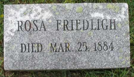 FRIEDLIGH, ROSA - Montgomery County, Ohio | ROSA FRIEDLIGH - Ohio Gravestone Photos