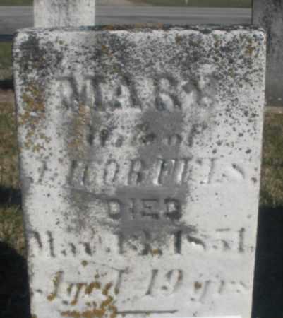 FULS, MARY - Montgomery County, Ohio | MARY FULS - Ohio Gravestone Photos