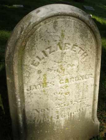 GARDNER, ELIZABETH - Montgomery County, Ohio | ELIZABETH GARDNER - Ohio Gravestone Photos