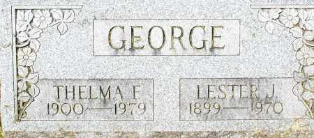 GEORGE, THELMA F. - Montgomery County, Ohio | THELMA F. GEORGE - Ohio Gravestone Photos