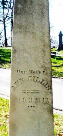 GILLIS, ANN - Montgomery County, Ohio | ANN GILLIS - Ohio Gravestone Photos