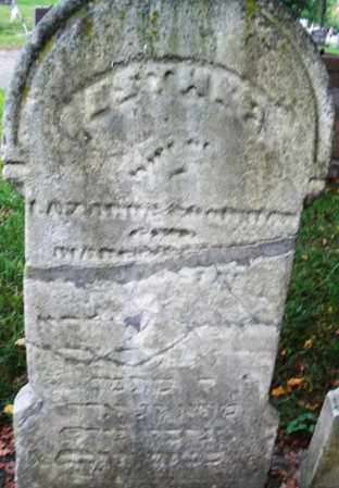 GOODMAN, ESTHER - Montgomery County, Ohio | ESTHER GOODMAN - Ohio Gravestone Photos