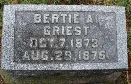 GRIEST, BERTIE A. - Montgomery County, Ohio | BERTIE A. GRIEST - Ohio Gravestone Photos