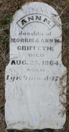 GRIFFETH (GRIFFITH), ANN M. - Montgomery County, Ohio | ANN M. GRIFFETH (GRIFFITH) - Ohio Gravestone Photos
